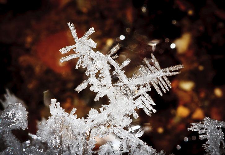 Ice, Ice , Icy!